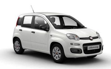 Rent  Kia Rio / Fiat Panda